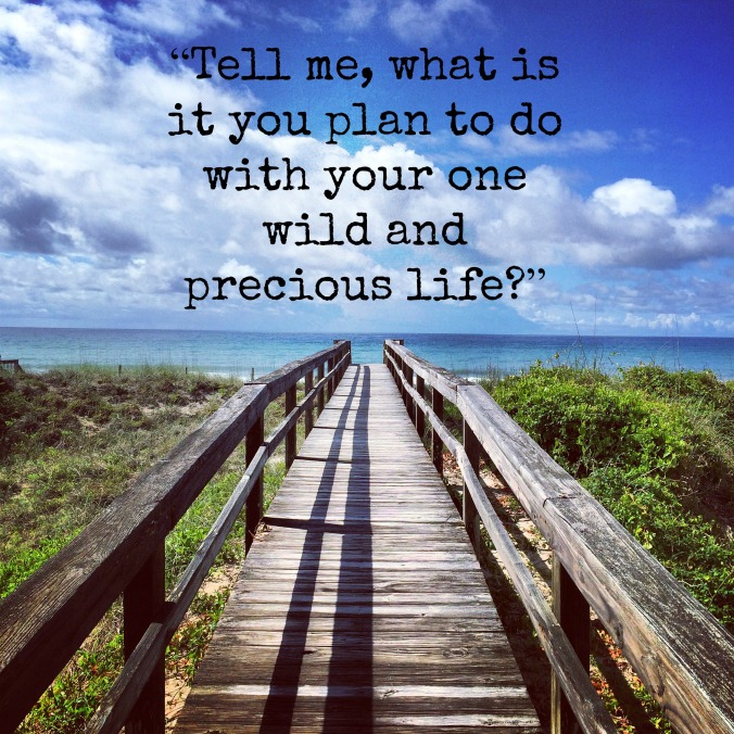 emerald isle june 2015 mary oliver quote